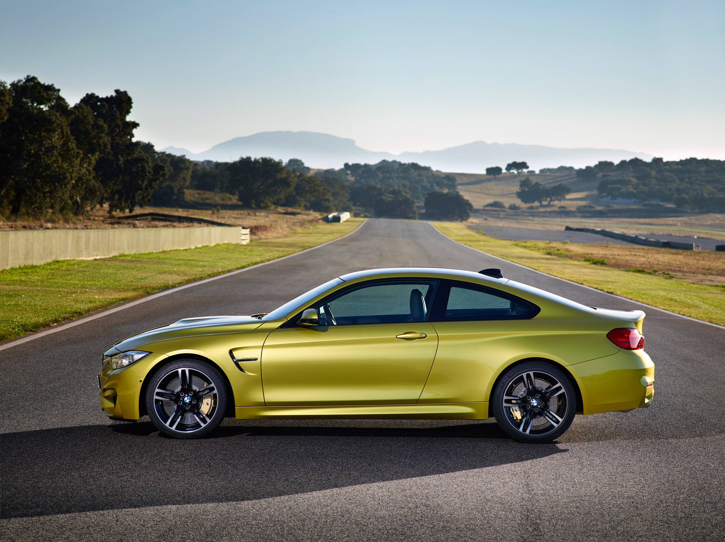 2015 BMW M3 And M4 Revealed