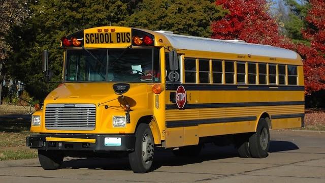 Wonder-129-School-Bus-Static-Image