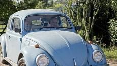 $1 million beetle