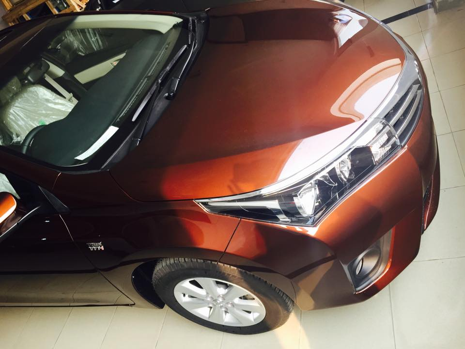 Toyota Corolla 2014 Brown Metallic  (1)