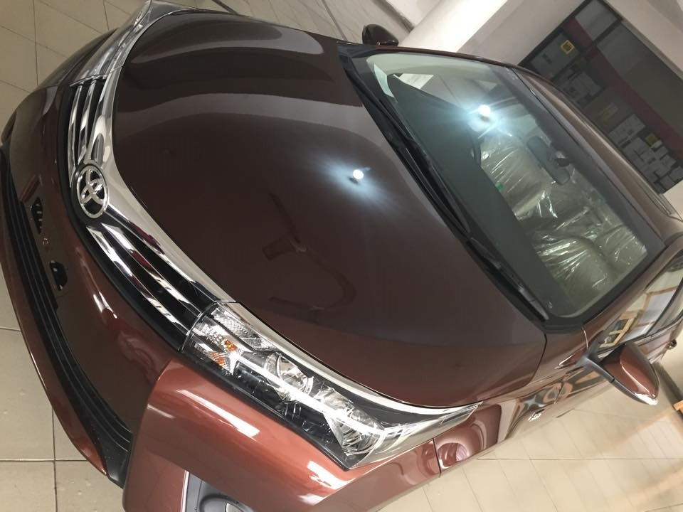 Toyota Corolla 2014 Brown Metallic  (10)