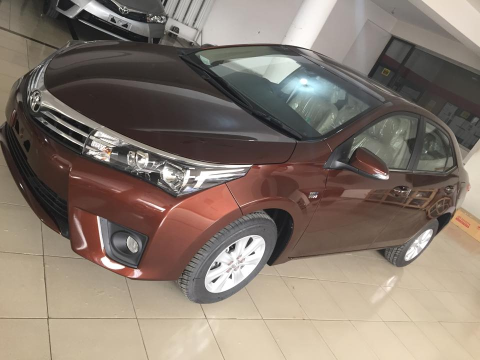 Toyota Corolla 2014 Brown Metallic  (2)