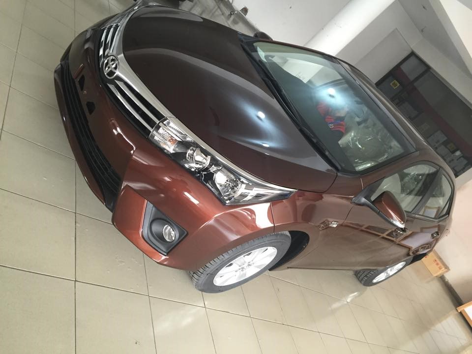 Toyota Corolla 2014 Brown Metallic  (9)