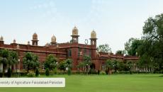 UAF-Faisalabad