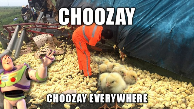 chicks-truck-accident