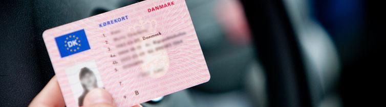 denmark-license