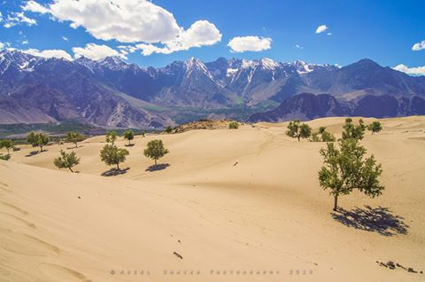 Sarfaranga Desert