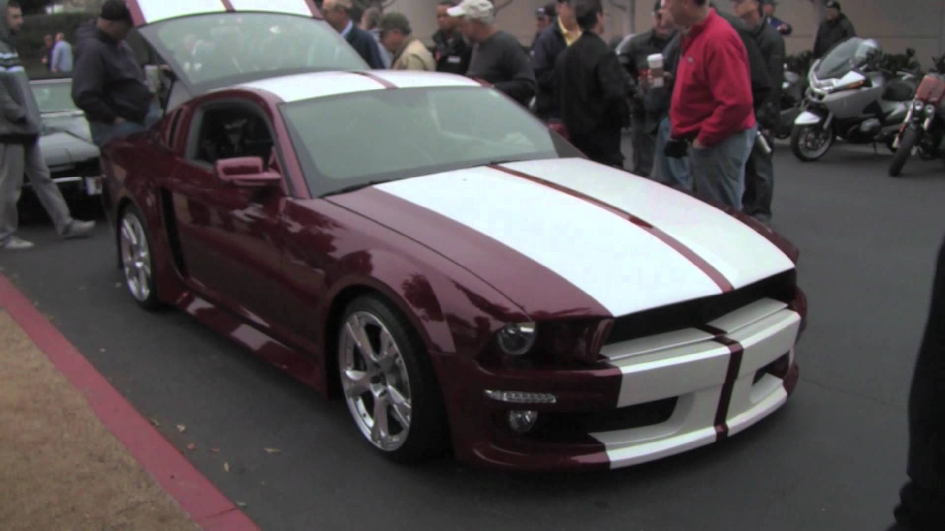 This guy loves ford mustang enough