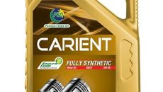 carient_fully_synthetic