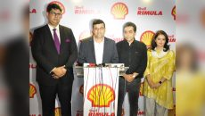 Shell Rimula What Matters Is Inside