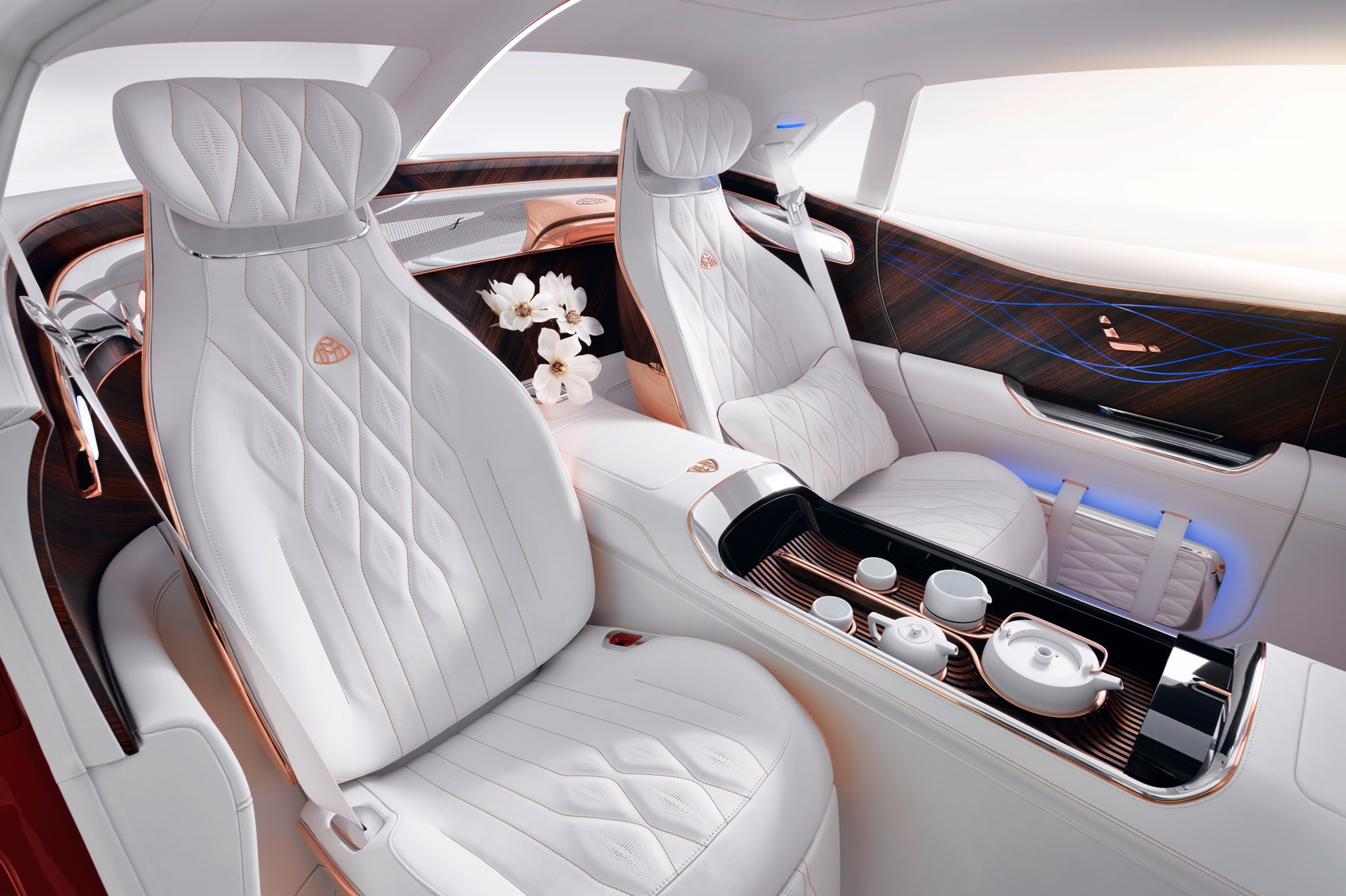 maybach ultimate luxury (3)
