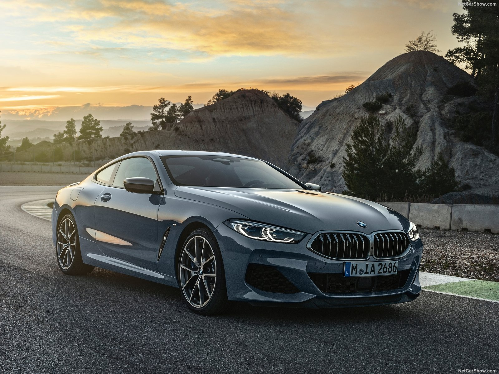 BMW-8-Series_Coupe-2019-1600-06