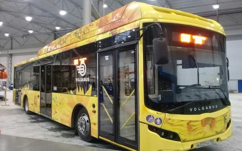 Volgabus-bus